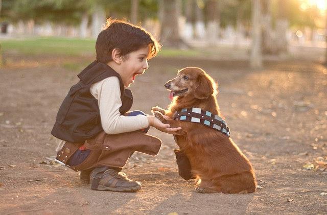 han-and-chewbacca-dachshund-1